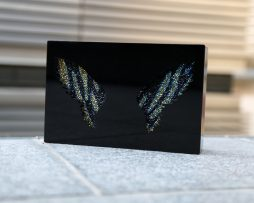 Plexi wings multicolored strass shooting