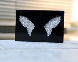 Plexi wings silver strass shooting